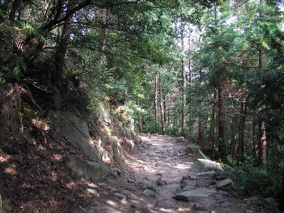 pilgrim-path