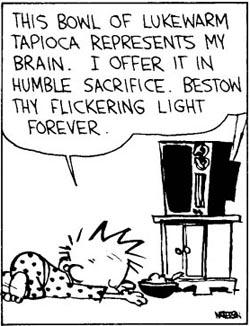 Calvin-worship