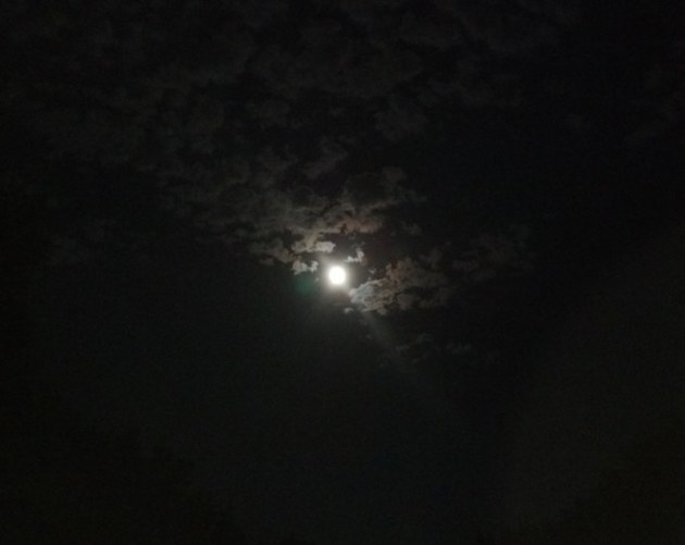 "The moon over my backyard last fall ""upon whom gleams""."