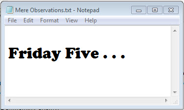 Friday Five-Mere Observations
