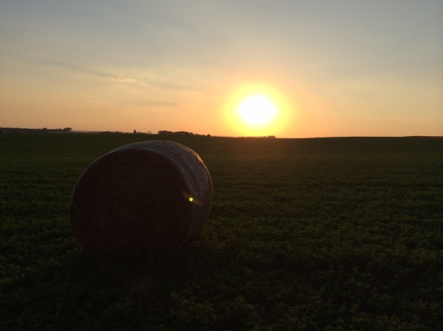 hayfield sunset_2
