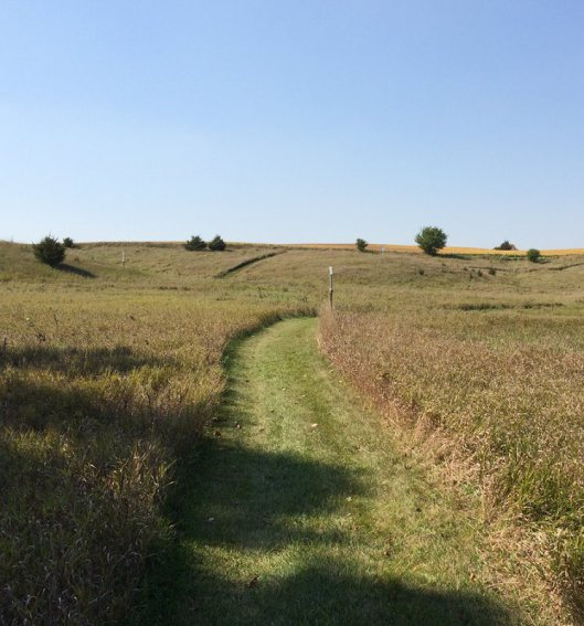 The path on The Stations of the Cross at Broom Tree taken by  the author in Sept. 2014.