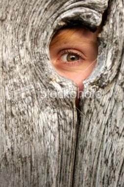 peeking-through-knothole