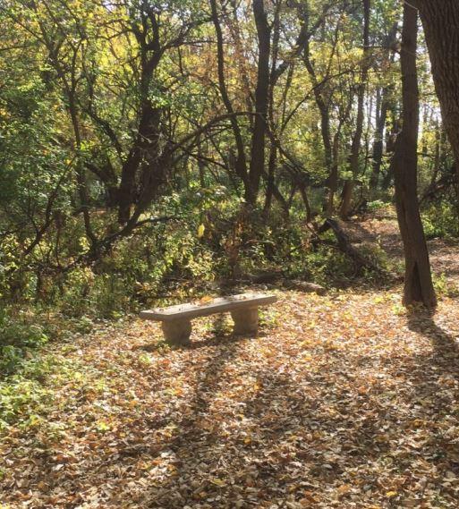 bench_jr